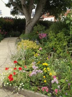 High Quality Thornbury Community Garden